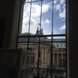 vue sur le Grand Palais